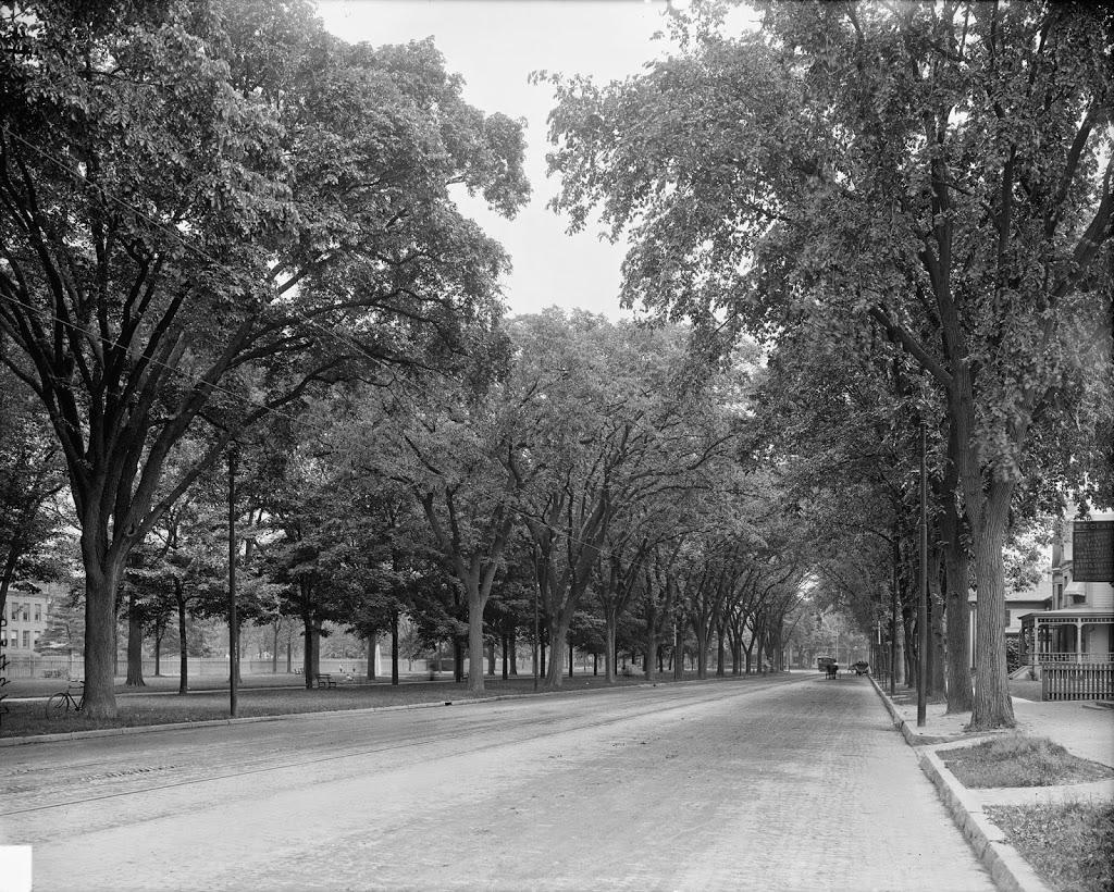 210_1900-1910-loc.tif