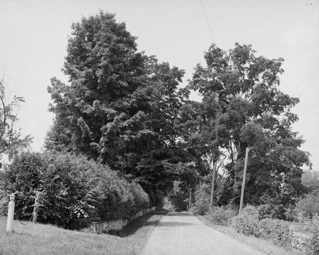 536 1900-1910c loc